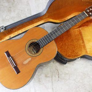SHINWA GUITAR G-30