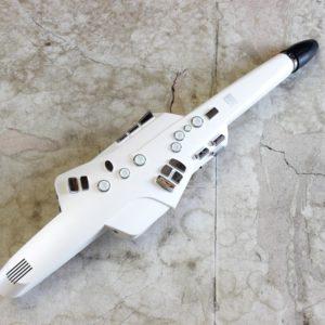 Roland AE-10