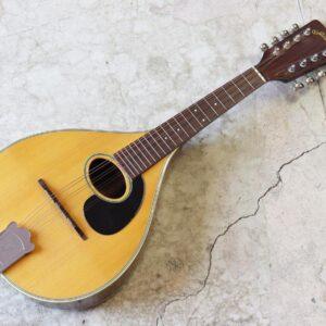 Jumbo flat mandolin